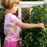 nurturing-cost
